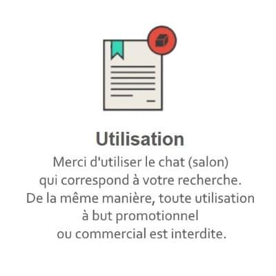Règles du Tchat Gratuit de Rencontre-Petit.eu
